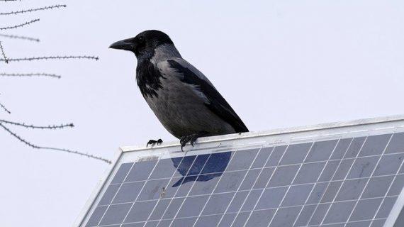 מערכת סולארית לבית – לניצול חכם של אנרגיית השמש