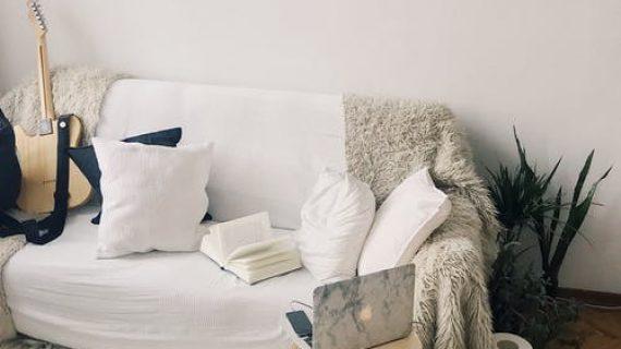 שומרים על הספה באמצעות כיסוי ספות